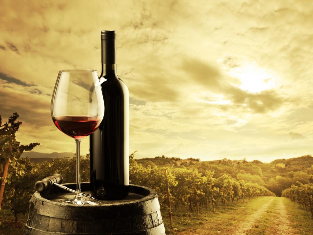 Largest Amazon Markets Largest Wine Market