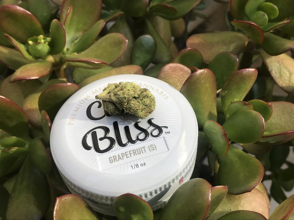 Pot Stocks, ETFs, Top News And Data From The Cannabis