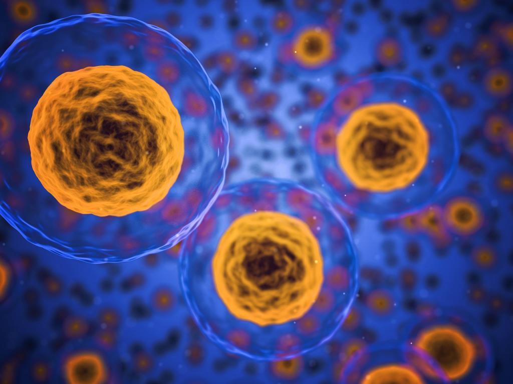 Bayer to acquire BlueRock Therapeutics for $240M