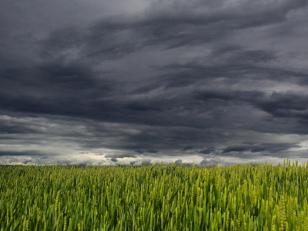 Dark Clouds Continue To Gather For Intuit As Tax Season
