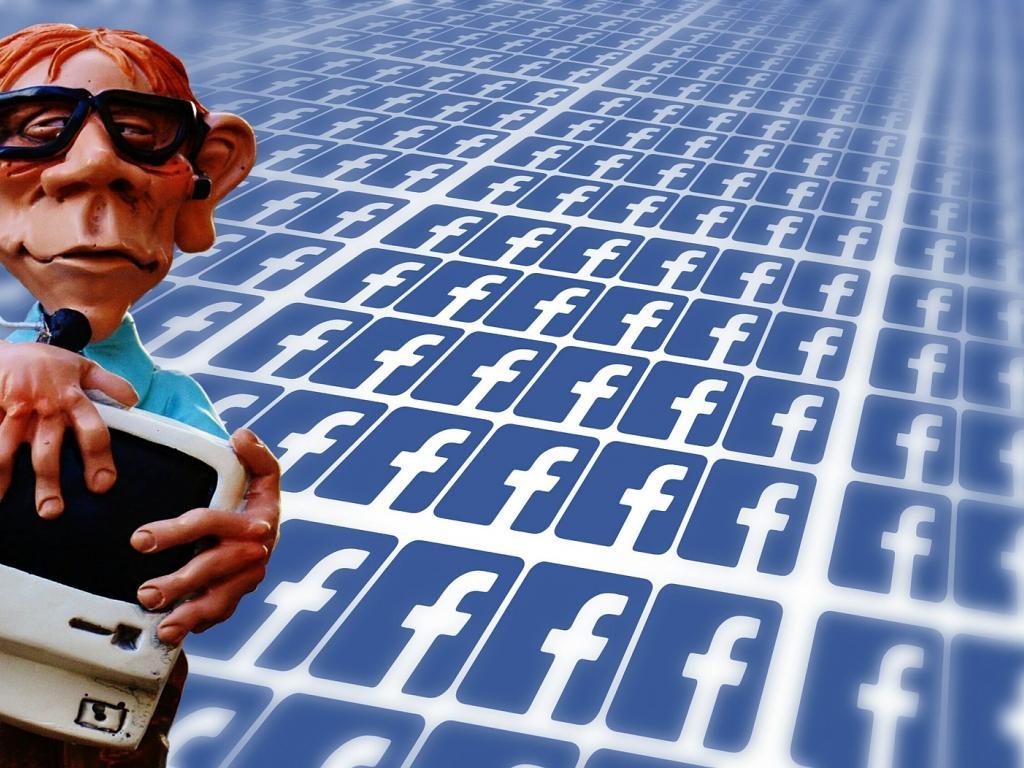 Facebook, Inc  (NASDAQ:FB), LinkedIn Corporation (NYSE:LNKD