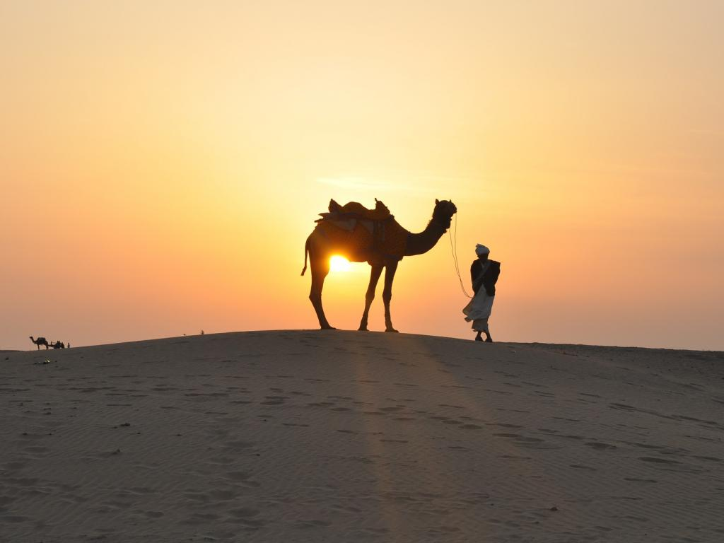 Behaving As Expected: Saudi Arabia ETF Rises With Oil