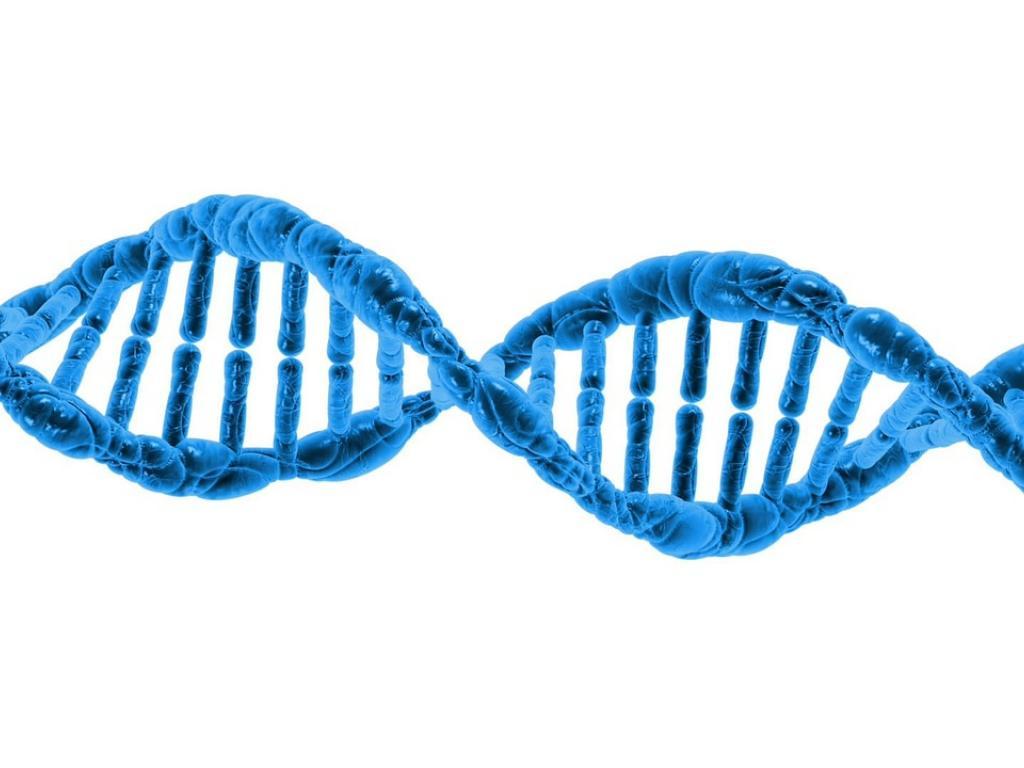 Proteostasis Therapeutics Rallies On Genentech Licensing
