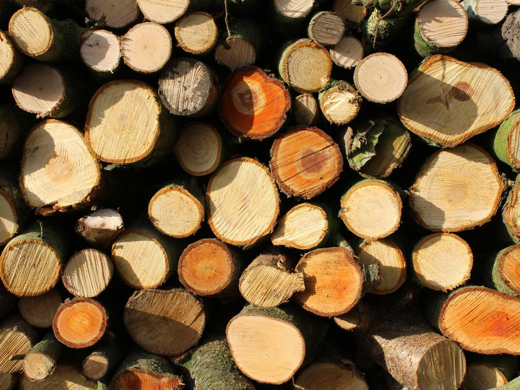 Analyst Downgrades Weyerhaeuser (NYSE:WY) After Decade Of Dismal