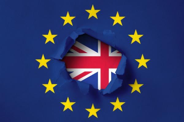 UK Election: Johnson Promises Brexit, Trump Renews Trade Deal Calls
