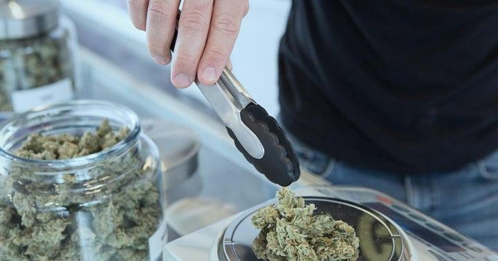 Boston Cannabis Delivery Platform Zip Run Raises $2.3M In Round Led By Mollitiam Capital