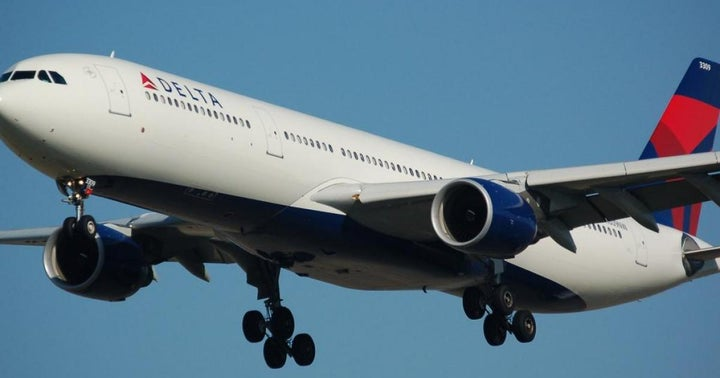 Delta's Mixed Earnings: CEO, Analysts Speak Up