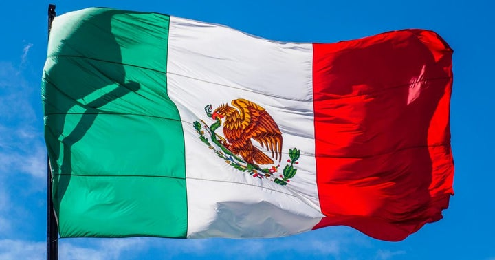 The Best Mexican Company You've Never Heard Of? Time To Learn About Betterware de Mexico