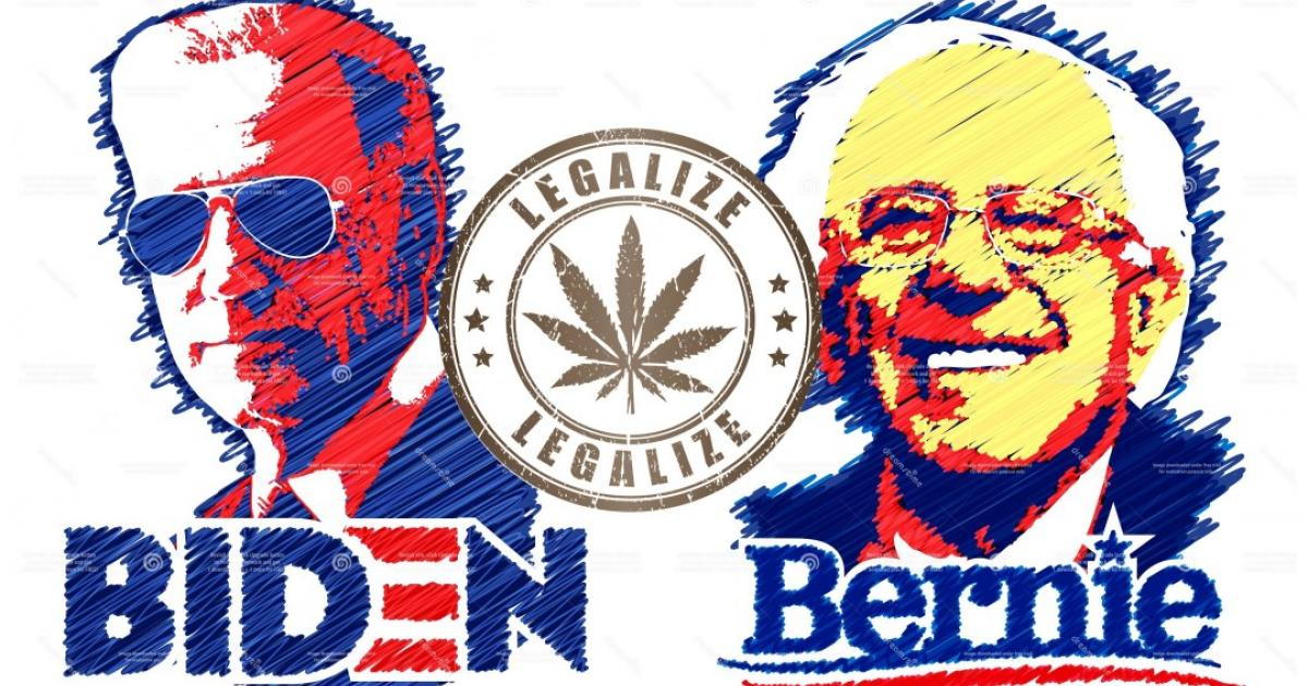 From Charlotte To Science: Why Now Is Prime Time For Biden To Embrace Bernie's Marijuana Legalization Plan