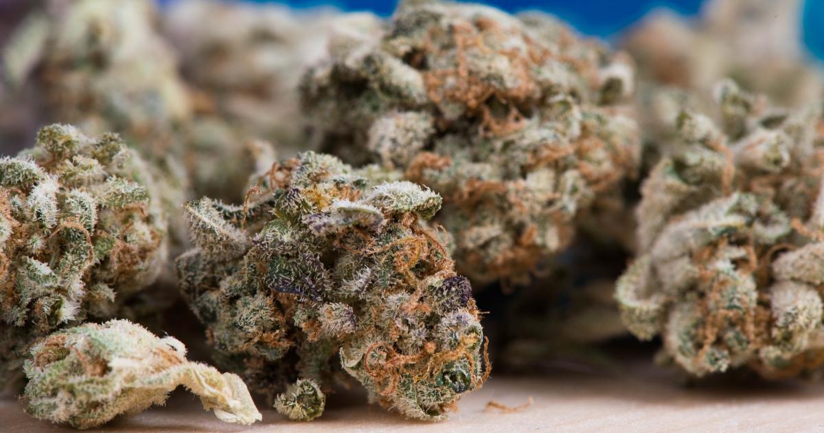 Active Cannabis ETF Eschews Canadian Names