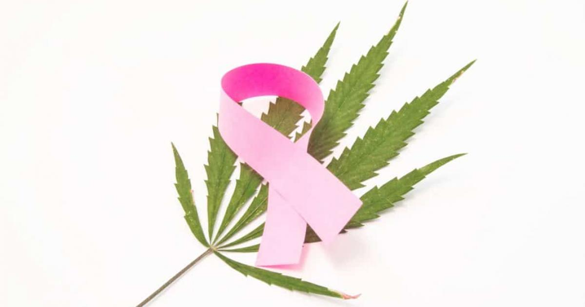 Cannabis During Breast Cancer Treatment: What Are The Benefits?
