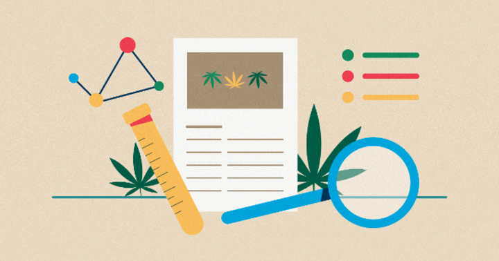 Cannabis Research Skyrocketed In 2020