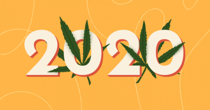The Cannabis Industry's Biggest Wins Of 2020