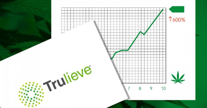 Marijuana Stocks: This Company Surged 600% Over 10 Months