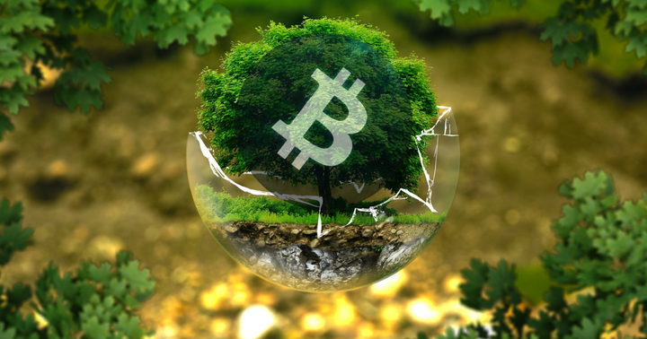 Bitcoin Gets a Carbon Black Eye from Musk, but Draper Stands by Price Predictions