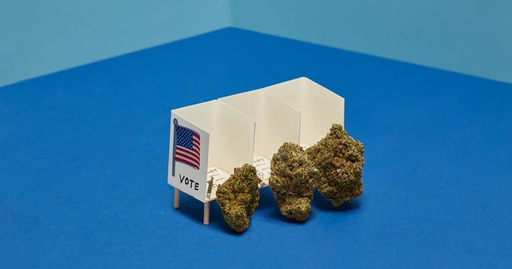 2020 Ballot Results: Where Is Weed Legal?