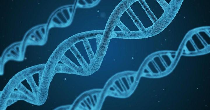Is Reddit Favorite BioNano Genomics About To Nosedive?
