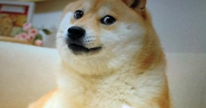 Dogecoin Hits New All Time-High As Elon Musk Takes Twitter Frenzy To A New Level