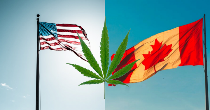 Why The U.S. Cannabis Industry Is Better Positioned Than Canada To Go National