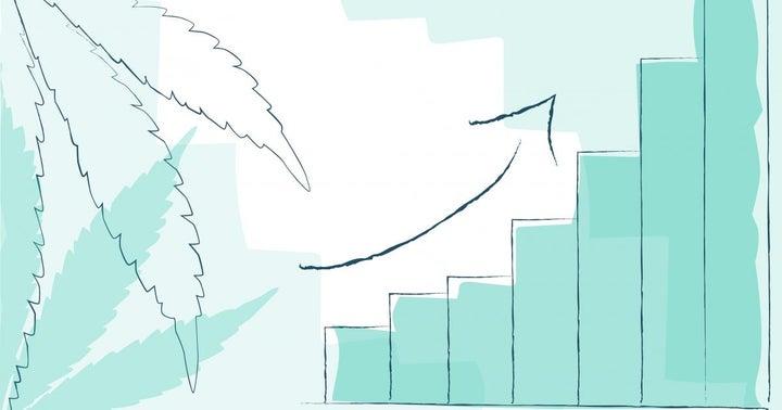 Zenabis Reports YOY Revenue Growth, Positive Adjusted EBITDA