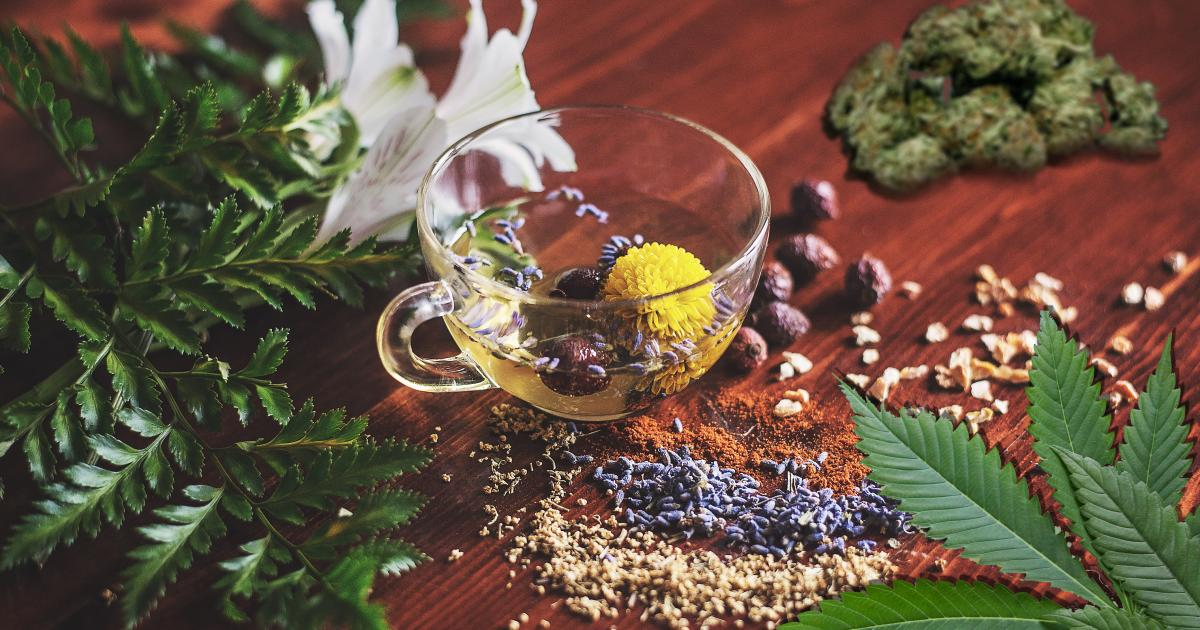 5 Drivers Of The Correlated Growth Of Cannabis, Herbal Medicine