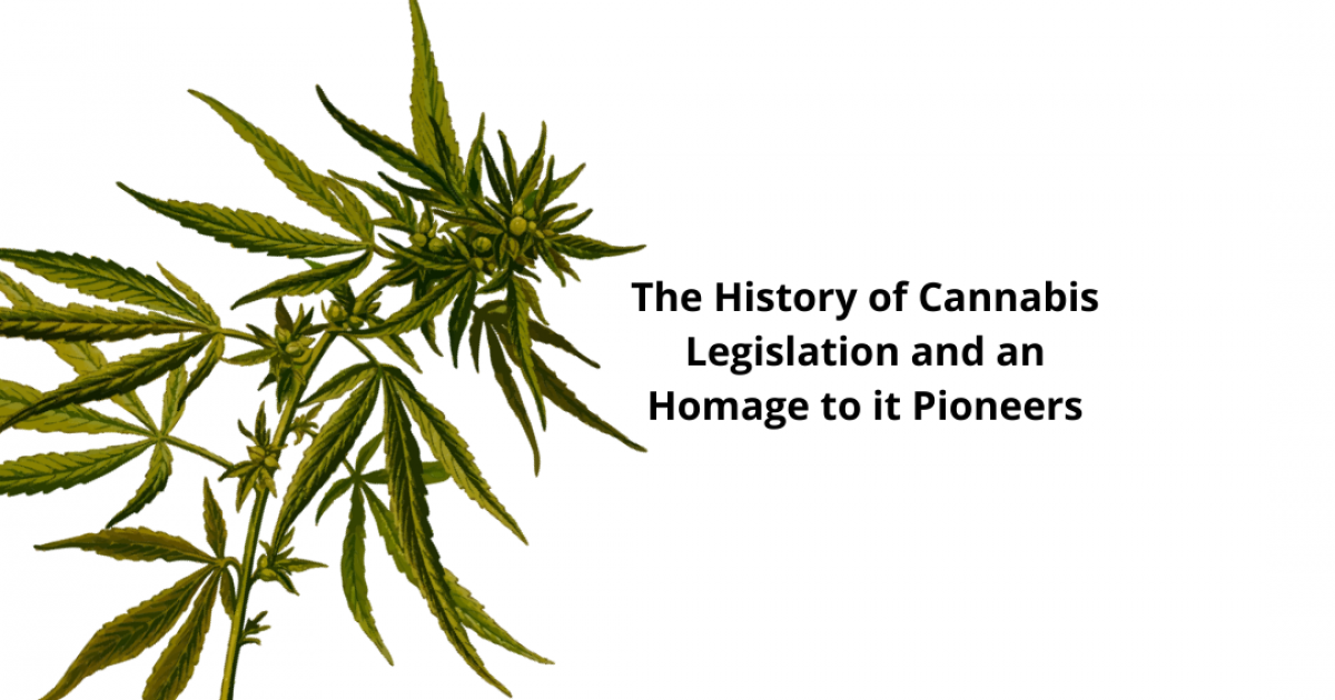 The History Of Cannabis Legislation And An Homage To Its Pioneers