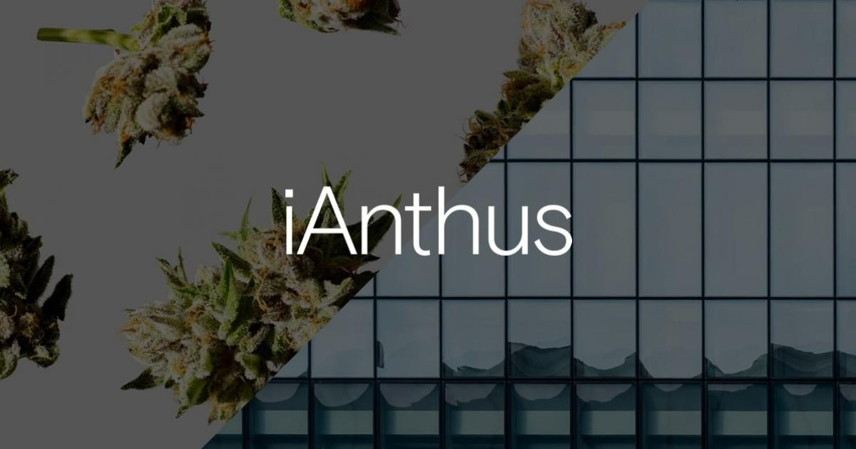 Dramatic Back-And-Forth Between iAnthus, Investors Foils M&A Plans: Report