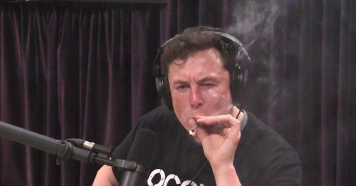 69 Stoned Elon Musk NFTs Sold For 420.69 Rally Each On 4/20
