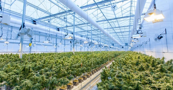 Cannabis Co. Jushi Holdings' $22M Acquisition Of Dalitso Facility Fortifies Virginia Position
