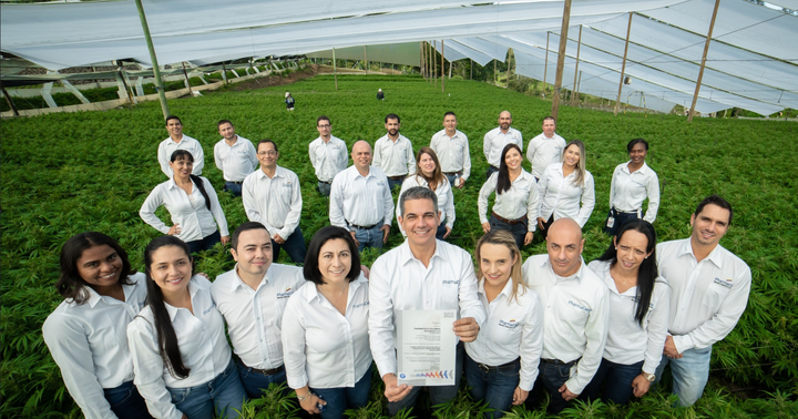 PharmaCielo Commences Cannabis Cultivation Outsourcing Program In Colombia