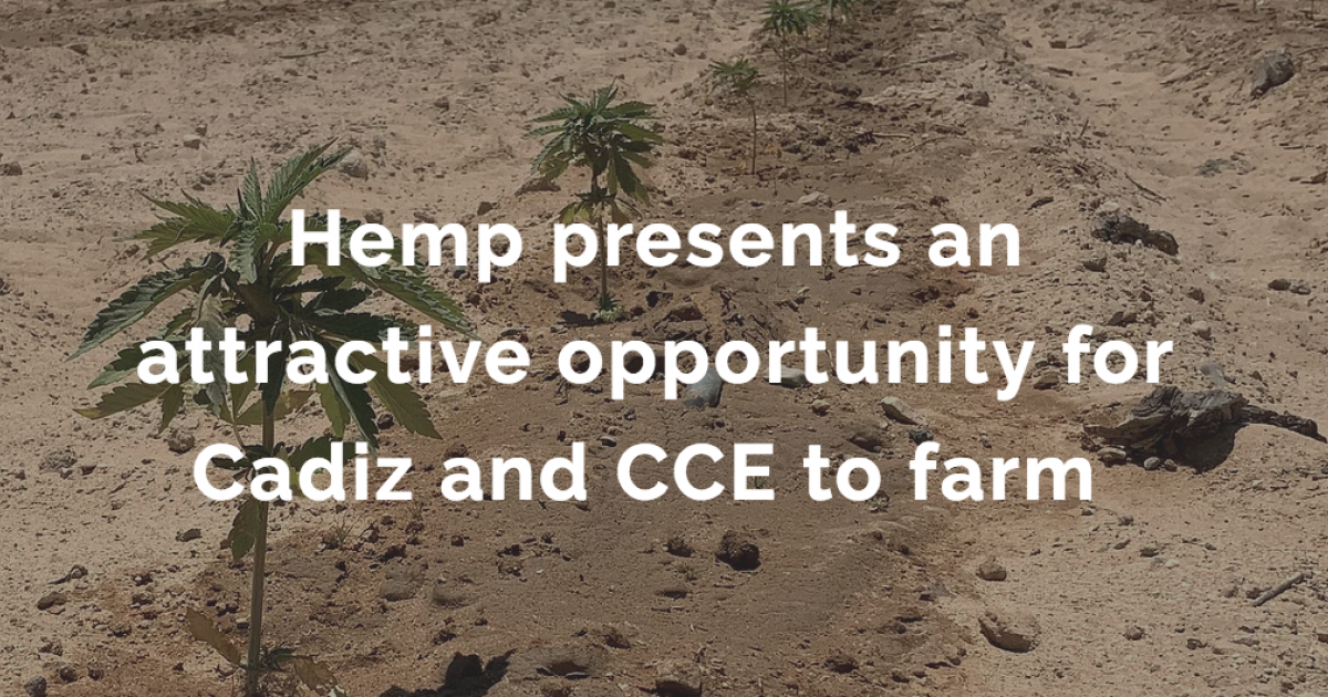 An Industry First: Nasdaq-Traded US Company Cadiz Gets Into The Hemp Business