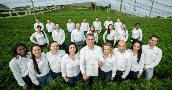 A Look At PharmaCielo's High-THC Cultivation Deal In Colombia