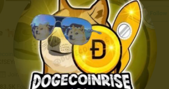 EXCLUSIVE: Dogecoin Rise On Working With Brands, Supporting Doge Community, Elon Musk And More
