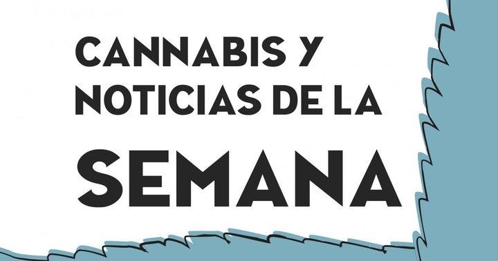 ESPAÑOL • Cannabis y Noticias de la Semana: Acciones en Rojo, Canopy Growth, Acreage Holdings, Aurora Cannabis, y Más