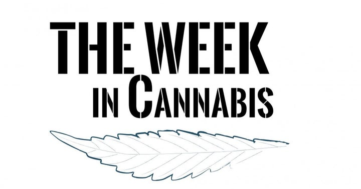 The Week In Cannabis: Stock Volatility, NJ, $1.9B IPO, Policy Moves, Financings, And More