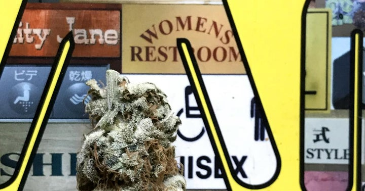 Vertical Brands' New President Cynthia Cleveland Discusses The Role Of Women In Cannabis