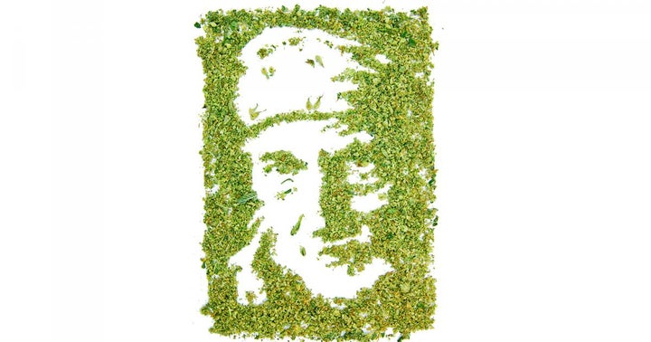 Willie Nelson Is The Hero That The Cannabis Industry Needs