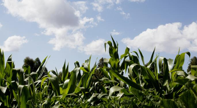 Agricultural Commodity ETFs Hit New Lows