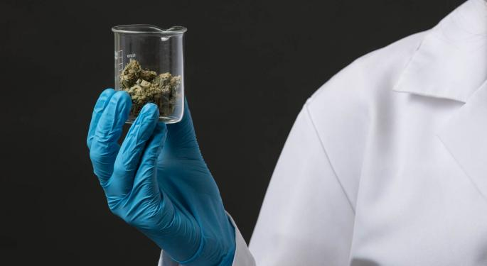 How To Obtain A Medical Marijuana Card In Florida: A Guide For Cannabis Patients