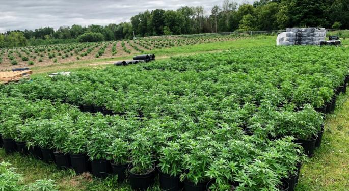 Aleafia Ends Supply Agreement With Aphria, Says Company Failed To Meet Obligations