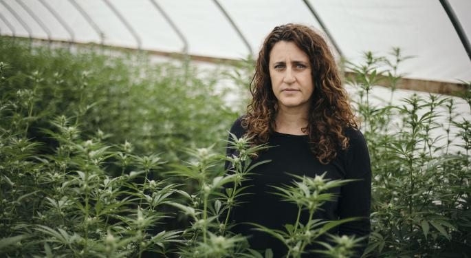Amy Margolis Shares Her Cannabis Story, Legal Advice: 'Entrepreneurs Need To Be Nimble, Adaptable And Willing To Pivot'