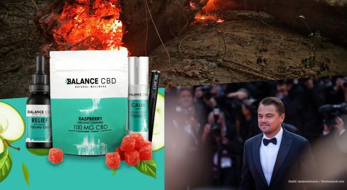 Balance CBD To Donate September Profits To Leonardo DiCaprio's Amazon Fund