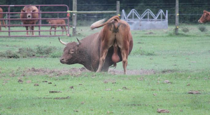 The Bull Market's Best-Performing Mid-Cap ETF