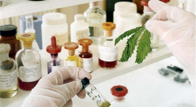 A Joint Venture: Two Marijuana Industry Leaders Plan to Produce Pharmaceutical Extractions