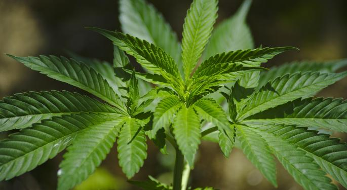 Canadian Cannabis Producer To Buy Israeli Medical Cannabis Company