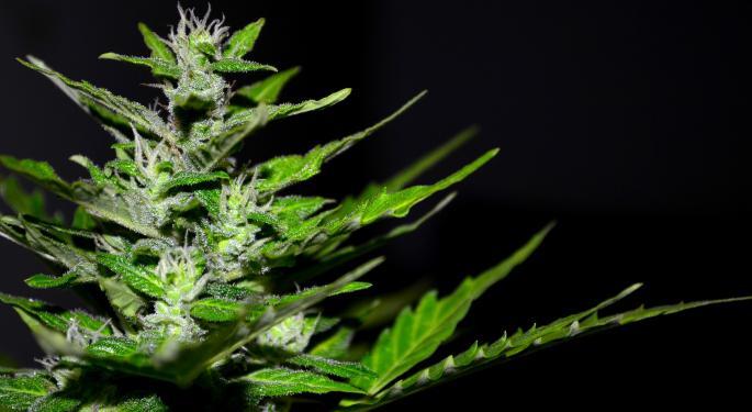 Has The Crypto Craze Killed The Marijuana Investing Buzz?