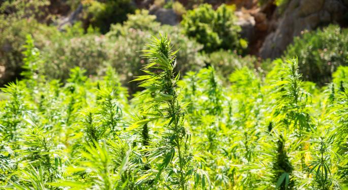 The Industry Calculates Its Bearings After USDA, FDA Set Hemp Rules