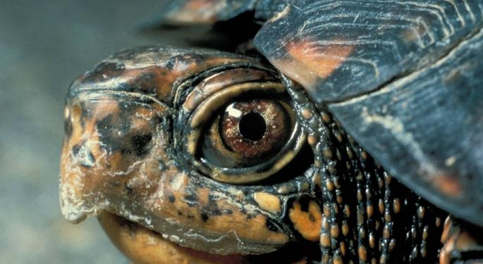 The Turtle Talks: Jerry Parker's Secrets To Success