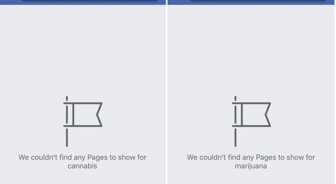 Facebook To Allow Verified Cannabis Pages