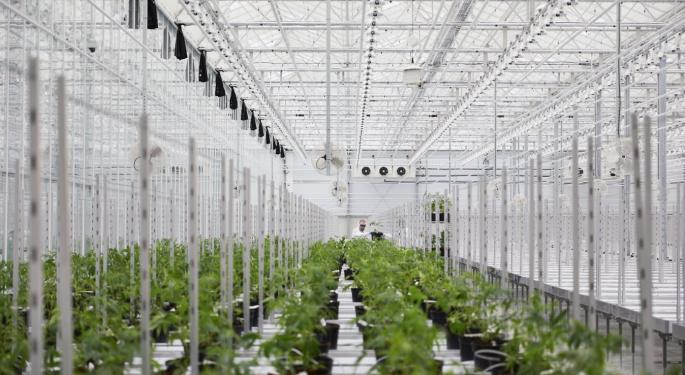 Hexo Shares Fall On News Of $20M Registered Direct Offering